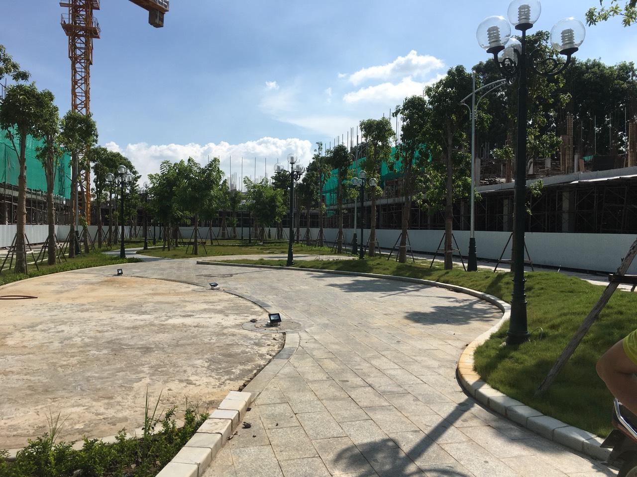 tiến độ thi công dự án bình minh garden